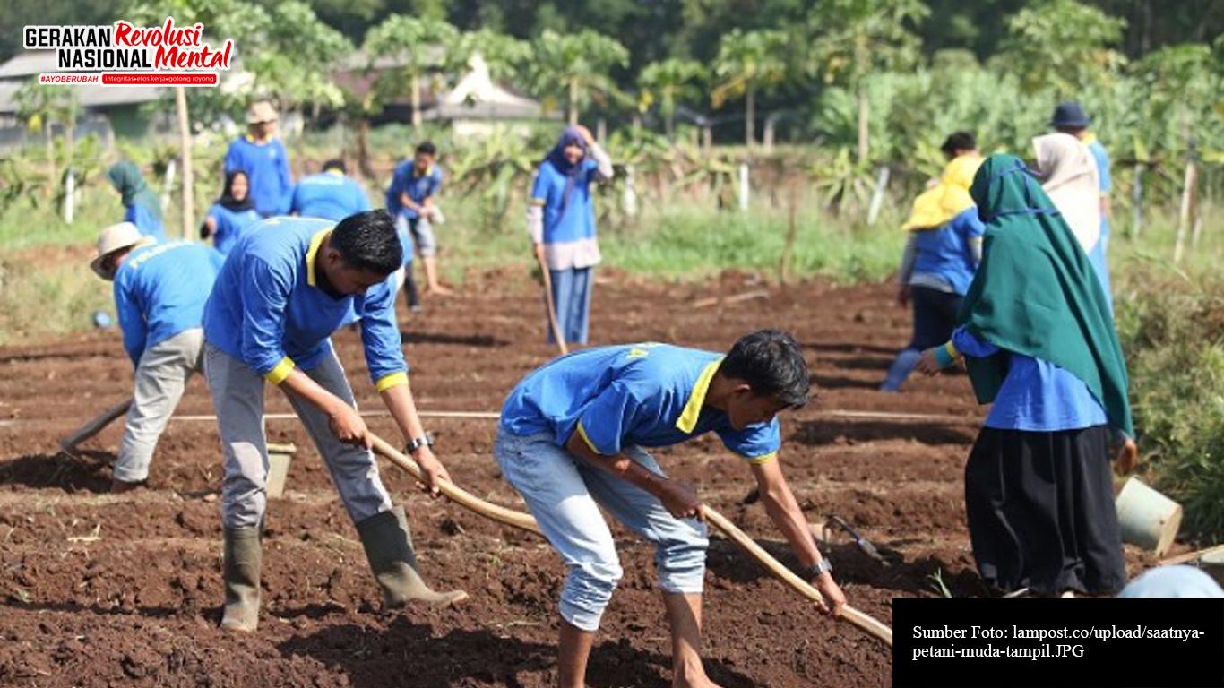 Petani muda sedang menggarap lahan pertanian